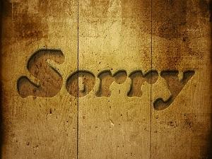 sorry-229978_640